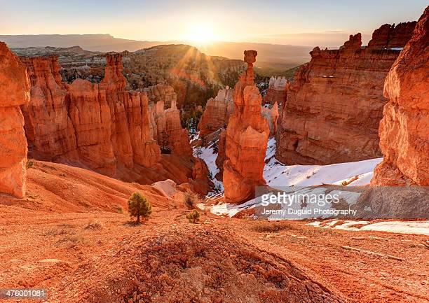 bryce canyon sunrise - bryce canyon - fotografias e filmes do acervo