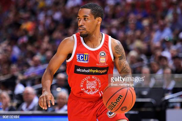 Bryce Cotton of the Wildcats controls the ball during the round 15 NBL match between the Sydney Kings and the Perth Wildcats at Qudos Bank Arena on...