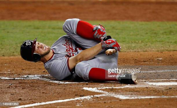 Bryce Harper of the Washington Nationals reacts after being hit with a ball during a game against the Miami Marlins at Marlins Park on May 30 2012 in...