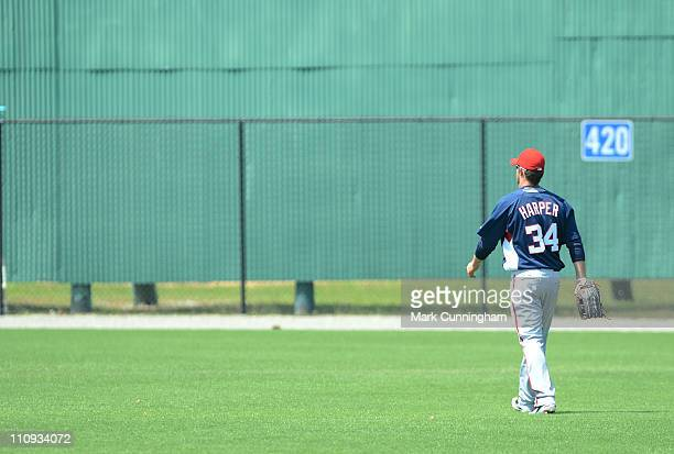 Bryce Harper of the Washington Nationals walks in the outfield against the Detroit Tigers during the minor league spring training game at the...