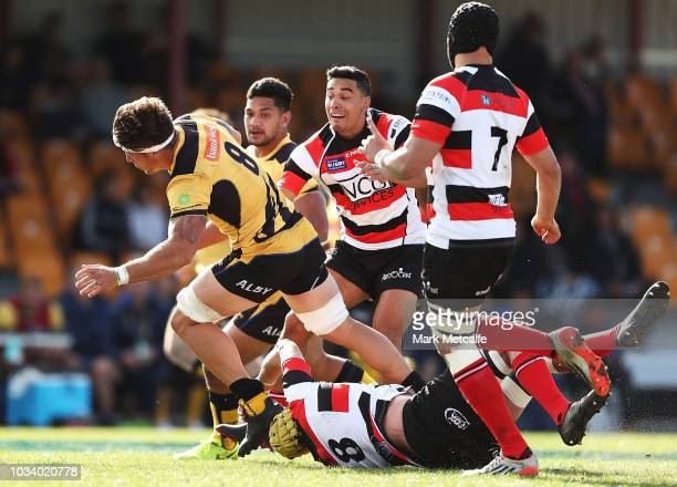Brynard Stander of the Force is tackled during the round three NRC match between Canberra Vikings and Western Force at Viking Park on September 16...