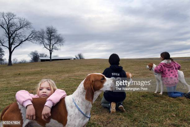 Brynn Miller leans against a foxhound as she learns how to show a dog along with Lainey Kammerer and Brynn's sister Hadley Miller during a meeting...