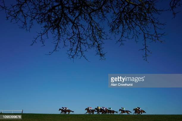 Bryony Frost riding Myplaceatmidnight lead all the way to win The Towergate Caravan Insurance Handicap Hurdle at Wincanton Racecourse on January 17...