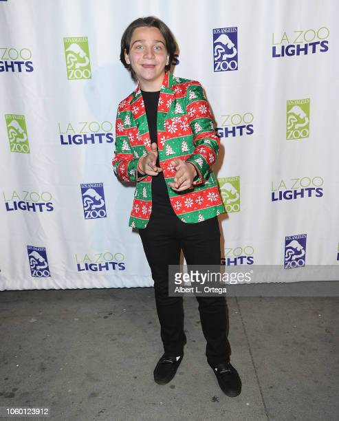 Bryson Robinson attends the LA Zoo Lights Special Preview/VIP Night held at Los Angeles Zoo on November 10 2018 in Los Angeles California