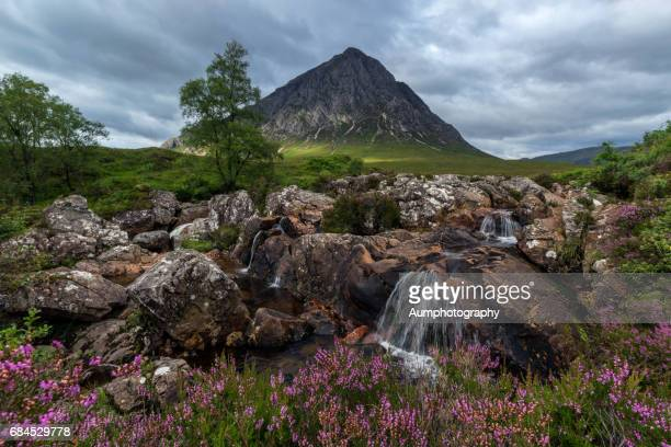 buachaille etive mor - grampian scotland stock pictures, royalty-free photos & images
