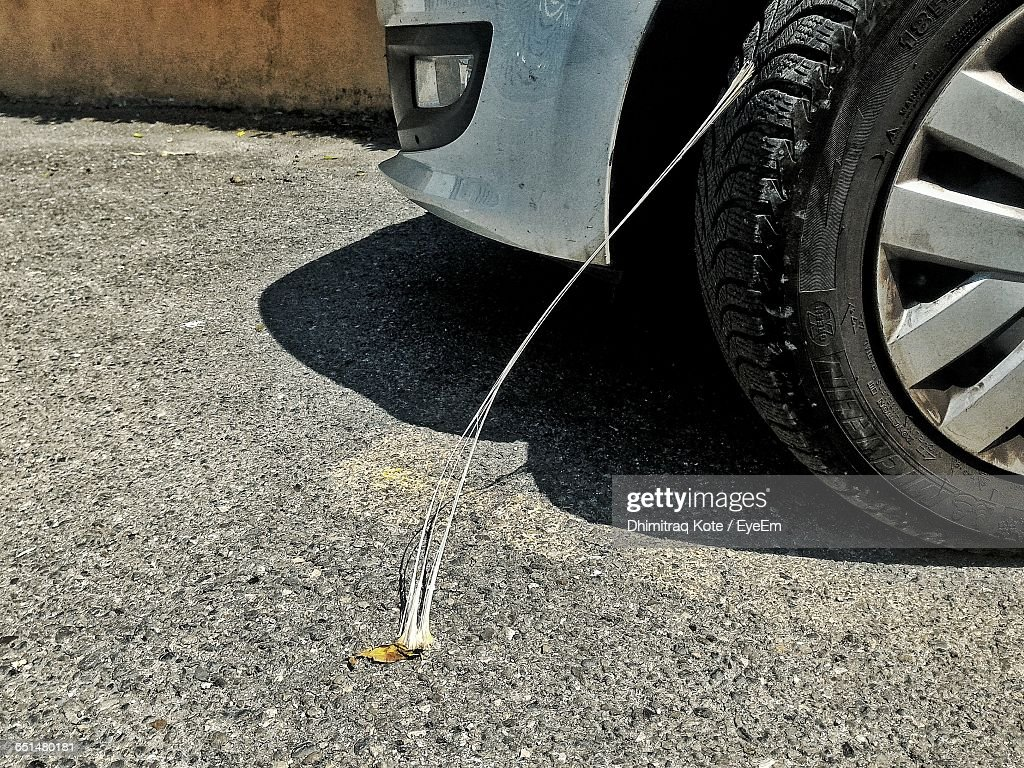 Bubble Gum Stuck To Car Tire On Road