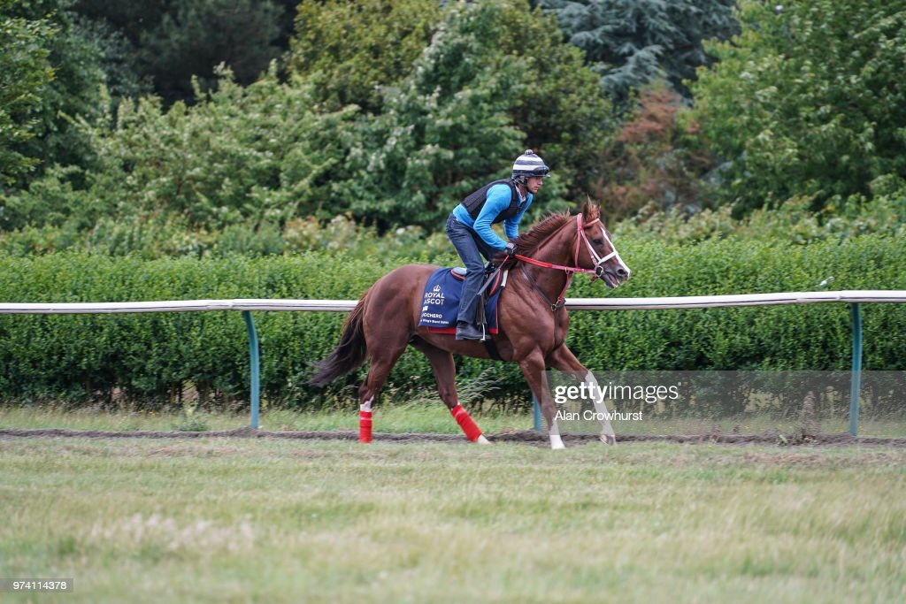 Bucchero on the Town Canter gallop on June 14, 2018 in Newmarket, England.