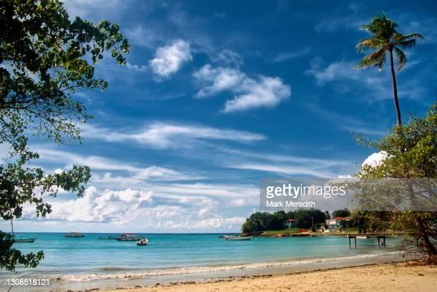 buccoo bay in tobago - paisajes de trinidad tobago fotografías e imágenes de stock