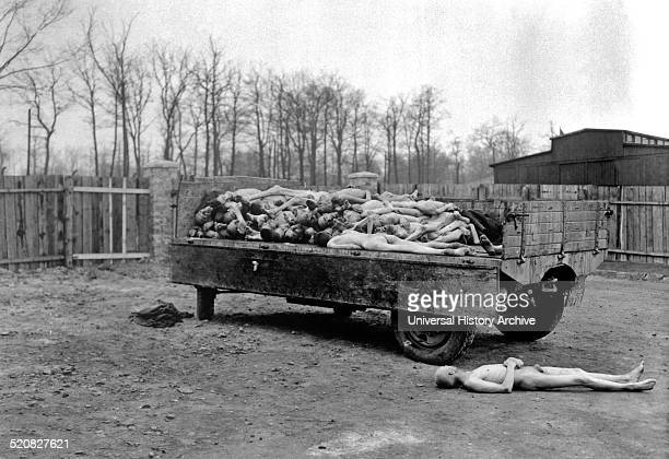 Buchenwald concentration camp The Image shows dead bodies of those that were held captive as prisoners of war Once the camps were liberated allies...
