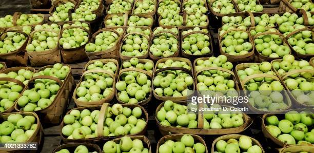 buckets of green apples - nancy green stock pictures, royalty-free photos & images