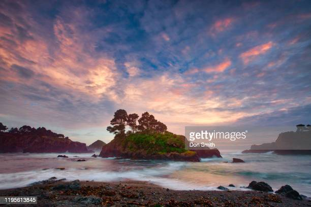 buckhorn cove, mendocino - don smith stock pictures, royalty-free photos & images