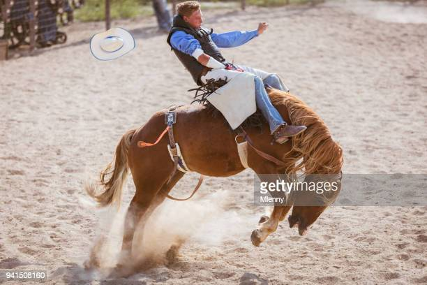 Bucking Bronco Cowboy Rodeo Action