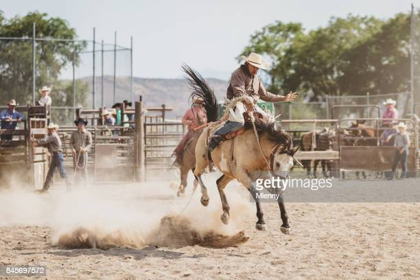 Bucking Bronco Rodeo Action Cowboy Riding Wild Horse in Arena
