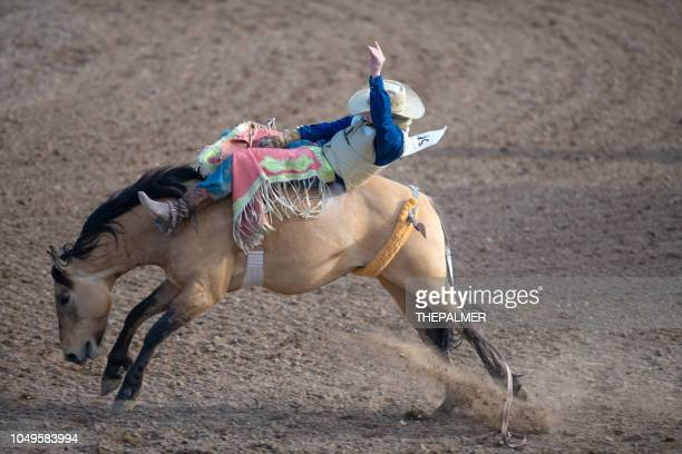 bucking bronco rodeo event - bucking stock photos and pictures