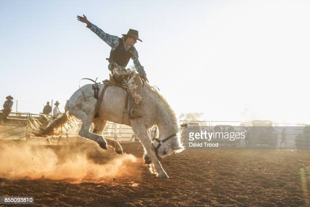 a bucking horse at a rodeo in central queensland, australia. - カウボーイ ストックフォトと画像