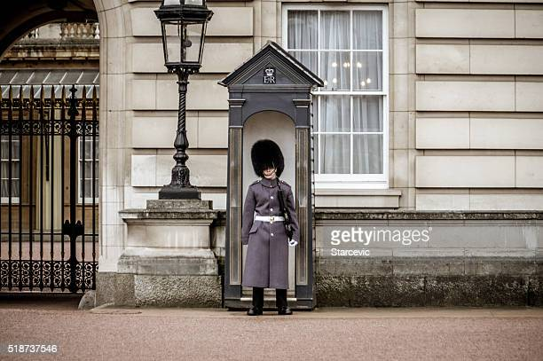 Buckingham Palace Guard, London, GB