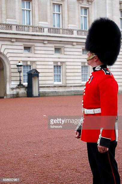 buckingham palace guard - bearskin hat stock pictures, royalty-free photos & images