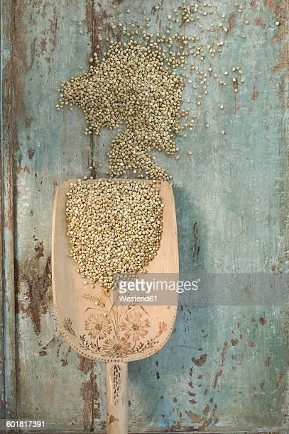 Buckwheat grains on wooden spoon, on wood