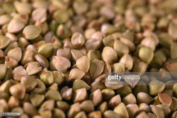 buckwheat seeds dancing captured with high speed sync - buckwheat stock pictures, royalty-free photos & images