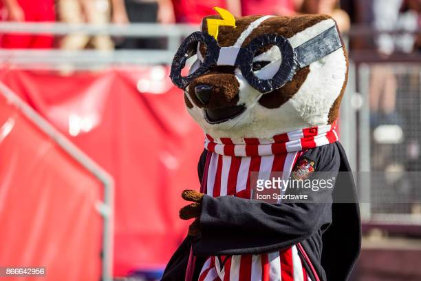 Bucky Badger dresses up for Halloween durning an college football game between the Maryland Terrapins and the Wisconsin Badgers on October 21st at...