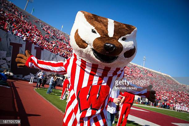 Bucky Badger of the Wisconsin Badgers is seen on the field during the game against the Indiana Hoosiers at Memorial Stadium on November 10 2012 in...