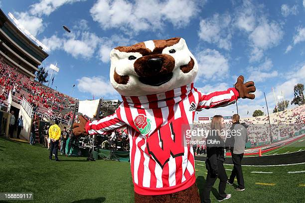 Bucky Badger the mascot for the Wisconsin Badgers poses on the field before the Badgers take on the Stanford Cardinal in the 99th Rose Bowl Game...