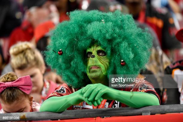 Bucs fan shows up as the Grinch during an NFL game between the Atlanta Falcons and the Tampa Bay Buccaneers on December 18 at Raymond James Stadium...