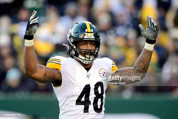 Bud Dupree of the Pittsburgh Steelers attempts to pump up the fans against the New York Jets during the second half at MetLife Stadium on December...
