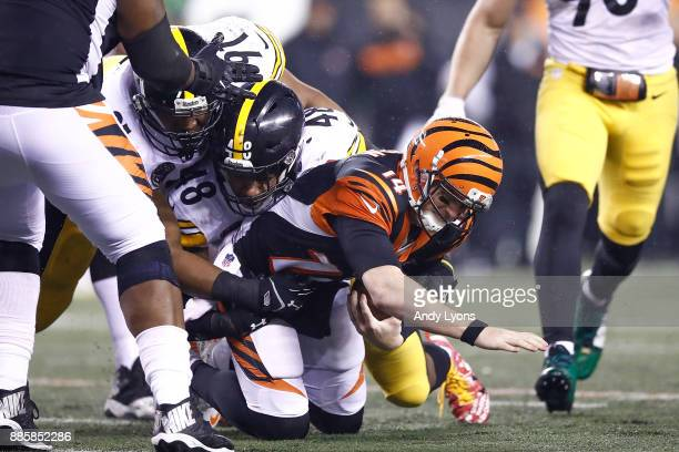 Bud Dupree of the Pittsburgh Steelers sacks Andy Dalton of the Cincinnati Bengals during the second half at Paul Brown Stadium on December 4 2017 in...