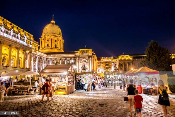 buda castle festival folk hungary - royal palace budapest stock pictures, royalty-free photos & images
