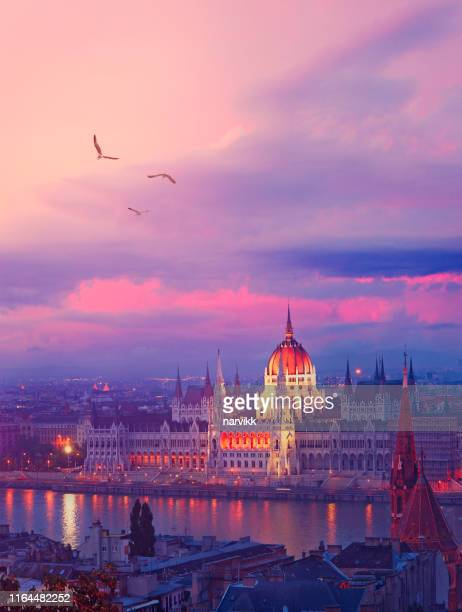 budapest by twilight - european culture stock pictures, royalty-free photos & images