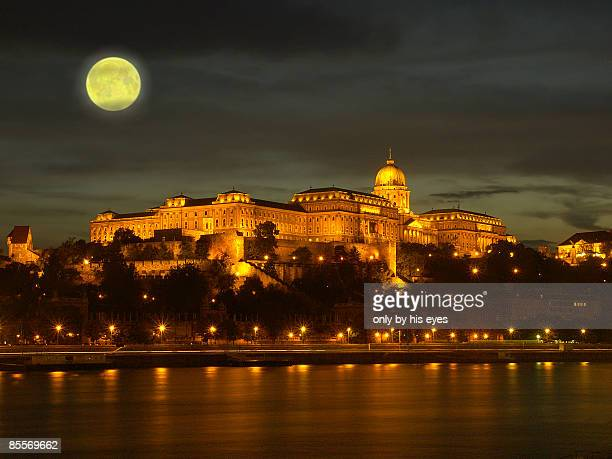 budapest moon - royal palace budapest stock pictures, royalty-free photos & images