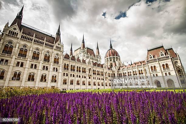 budapest parliament - sede do parlamento húngaro - fotografias e filmes do acervo