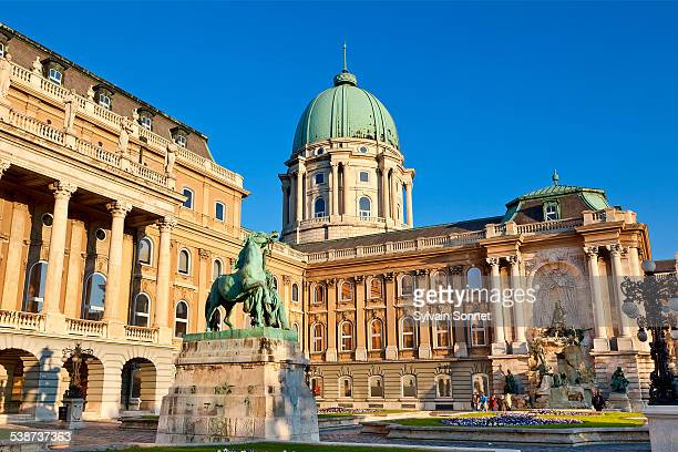 budapest, royal palace - royal palace budapest stock pictures, royalty-free photos & images