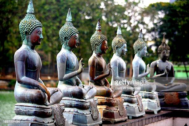 buddah statues, gangaramaya temple - colombo stock pictures, royalty-free photos & images