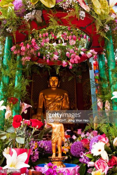 a buddha and a little buddha which was decorated by flowers - buddha's birthday stock pictures, royalty-free photos & images