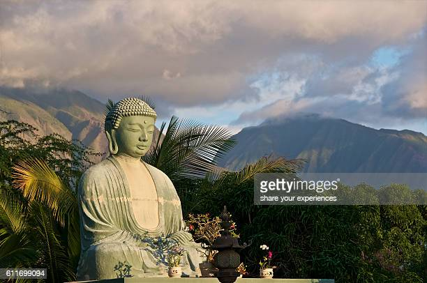 buddha at sunset - lahaina stock pictures, royalty-free photos & images