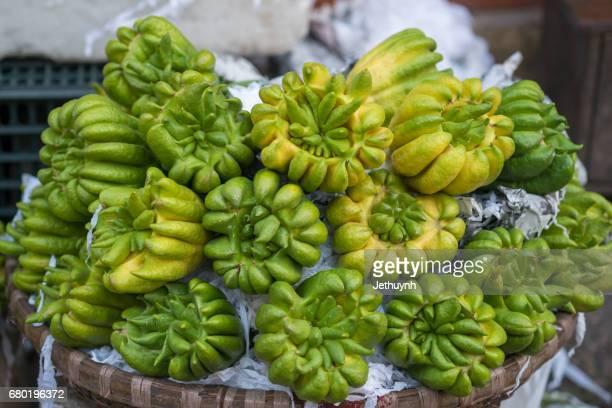 buddha hand fruit sell in the market, hanoi - buda fotografías e imágenes de stock
