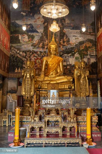 buddha images in temple. - tim bewer stock pictures, royalty-free photos & images