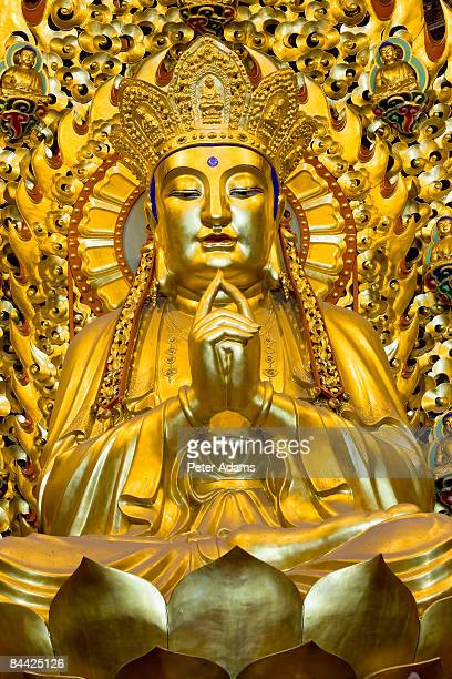 buddha, longhua temple, shanghai, china - longhua temple stock photos and pictures