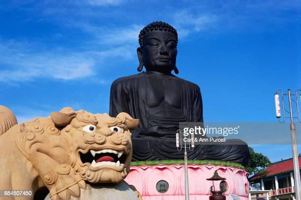 Buddha on Eight-Trigram Mountain