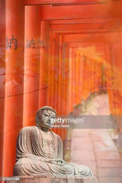 Buddha on Torri Path Montage