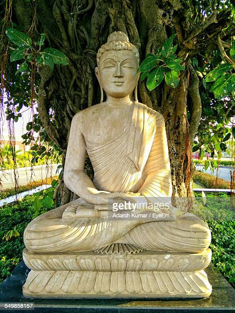 buddha statue against the tree - buddha foto e immagini stock