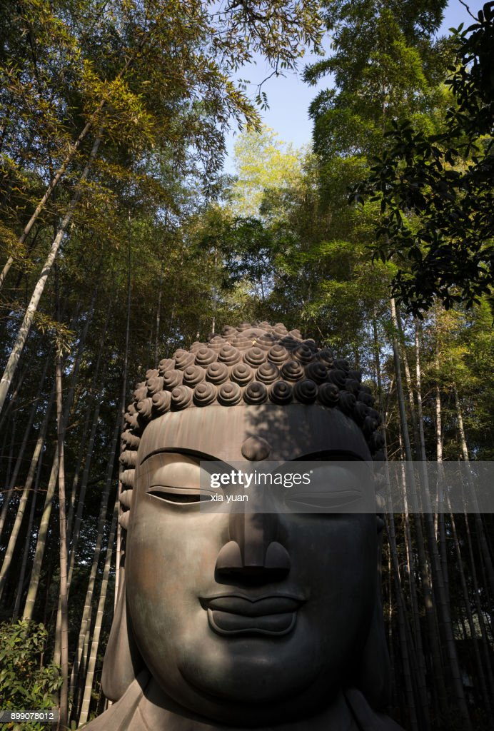 Buddha Statue Amidst Bamboo Forest : Stock Photo