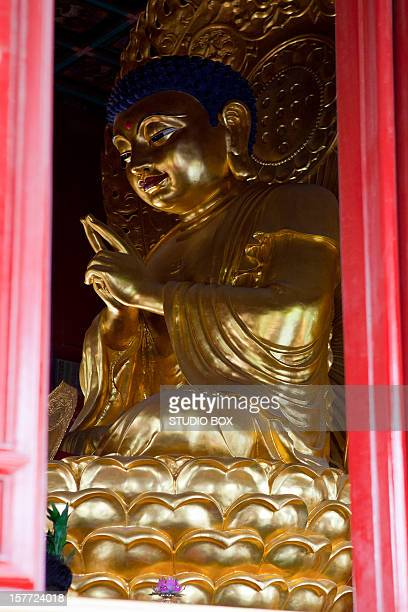 buddha statue near the forbidden city, beijing - studio city stock pictures, royalty-free photos & images