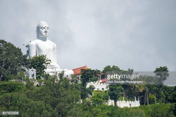 buddha statue, sri lanka, kandy - sri lankan culture stock pictures, royalty-free photos & images
