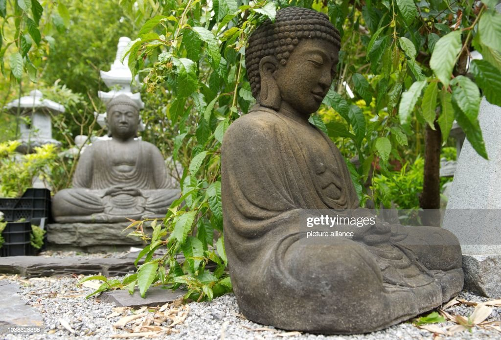 A Buddha Statue Stands Among The Flowers In A Garden In Lehrte, Germany, 04