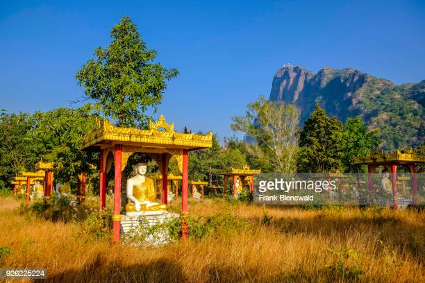 Buddha statues of Lumbini Garden sheltered by a colorful wooden roof with Mt Zwegabin in the distance