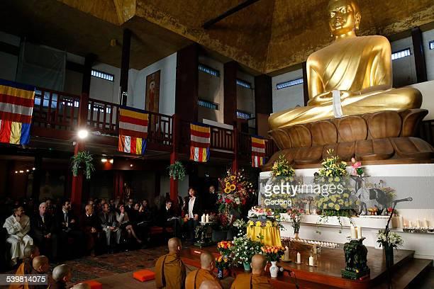 buddhist celebration - buddha's birthday stock pictures, royalty-free photos & images