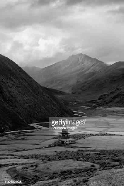 Buddhist CHORTEN and high altitude HIMALAYAN BARLEY or TSAMPA FIELDS in the DO TARAP VALLEY, DOLPO, NEPAL.